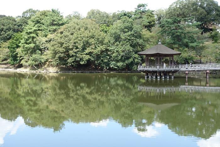 20140914_奈良・トレイルラン (41)