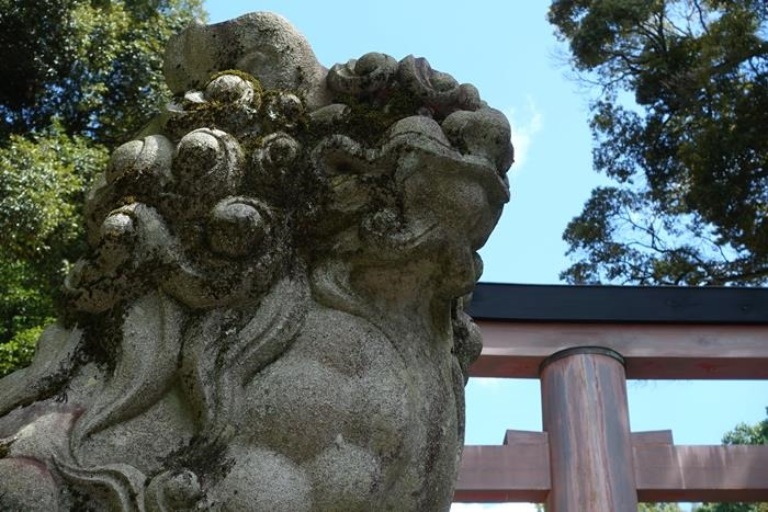 20140914_奈良・トレイルラン (48)