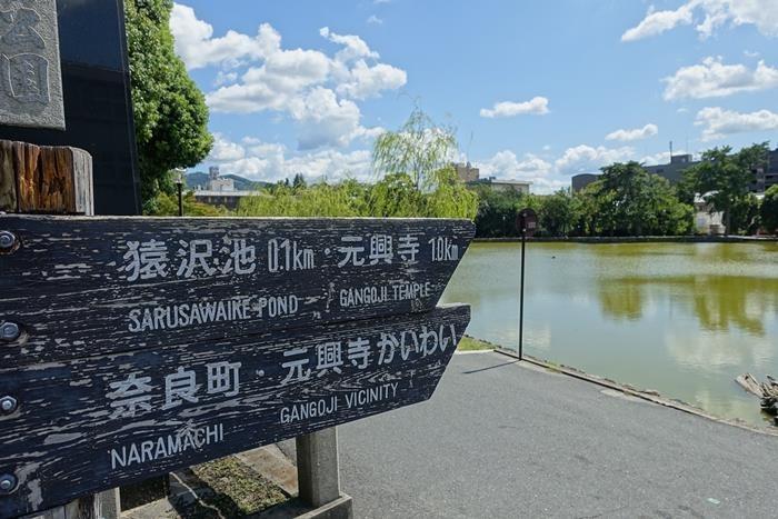 20140914_奈良・トレイルラン (7)