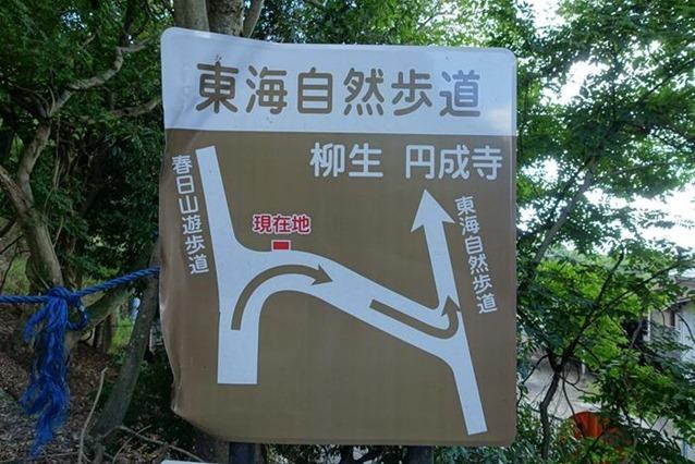 20140915_奈良トレイルラン (3)
