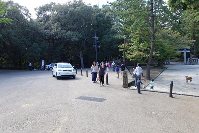 20140915_奈良トレイルラン (34)