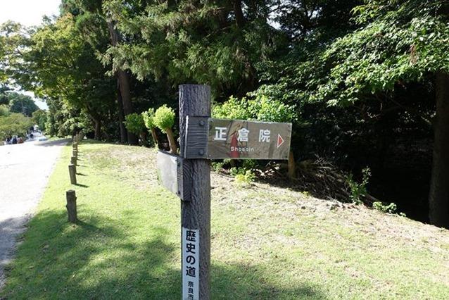 20140915_奈良トレイルラン (43)